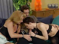 Anal German Group Sex Pantyhose Swinger